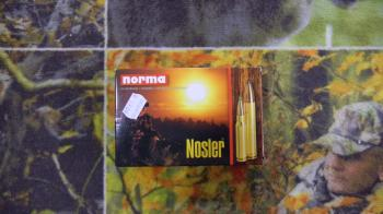 Norma Nosler BST 300 win mag 150 grains