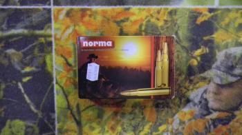Norma Pointe Plastique 280 rem 170 grains