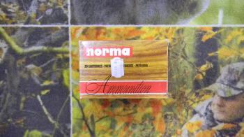 Norma Demi-blindée SP 270 win 150 grains